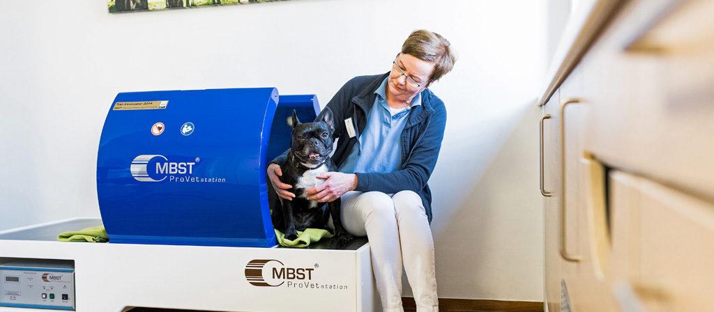 MBST - Dr. Voß